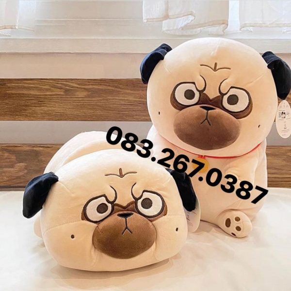 108286497_2908753399248093_3065545452182786879_o